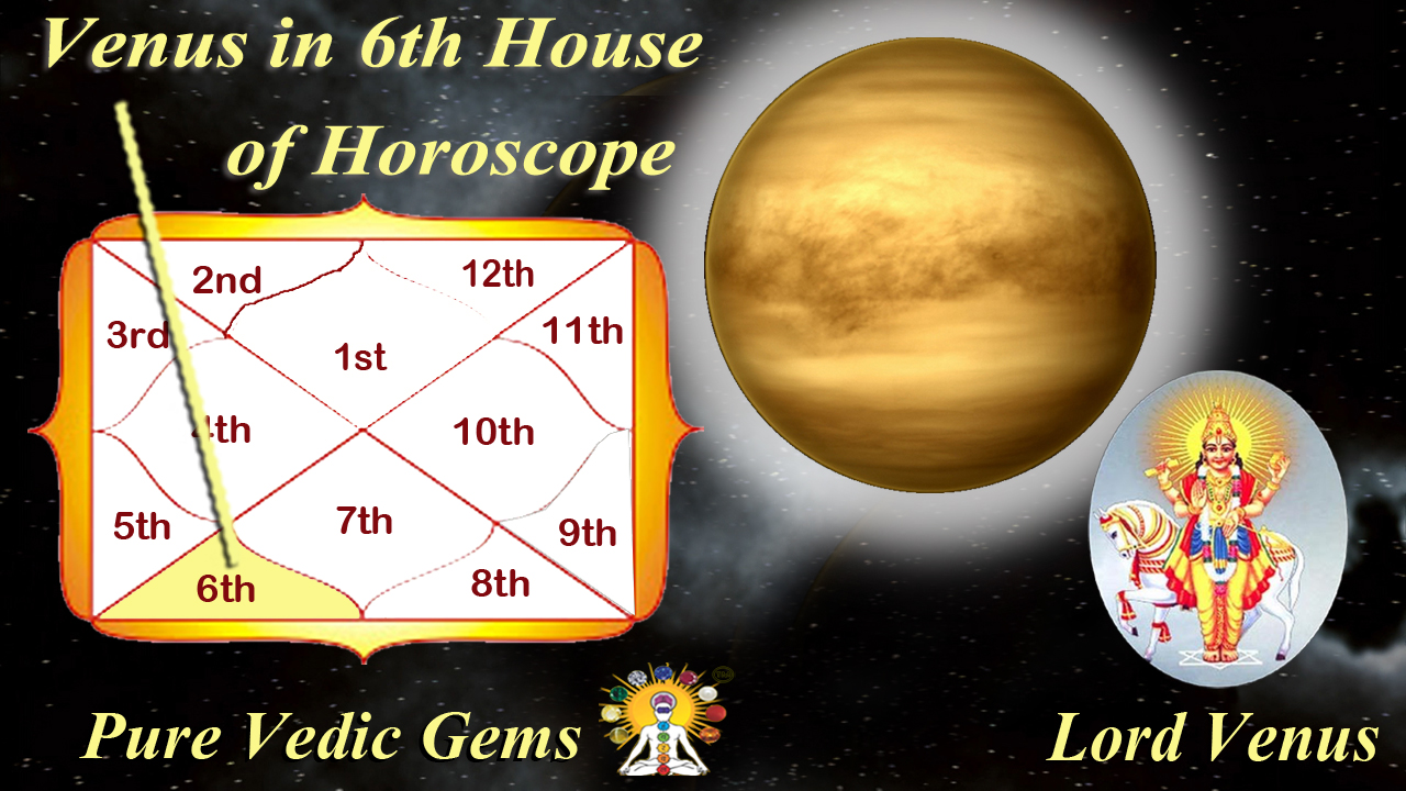 Venus Horoscope 6th