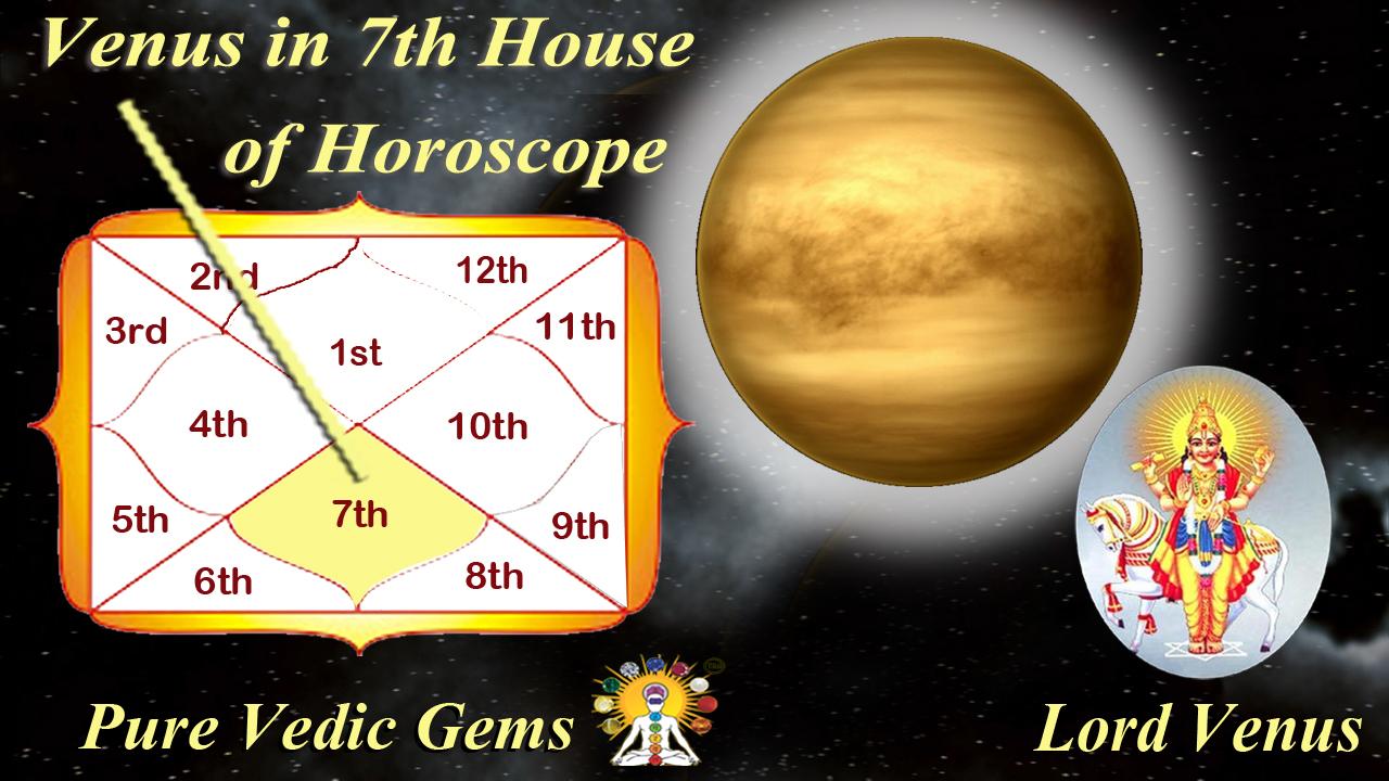 Venus Horoscope 7th