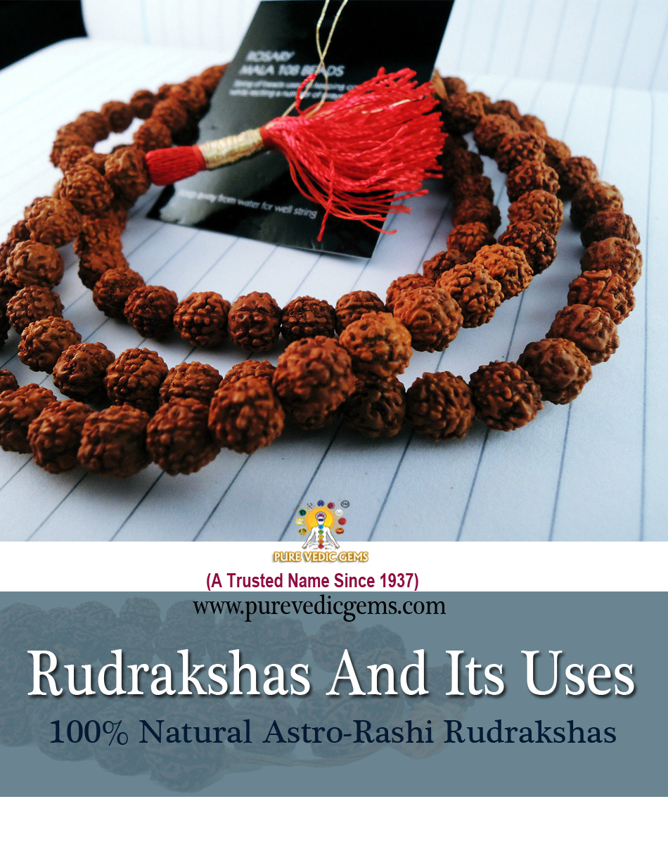 Rudrakshas And Its Uses copy